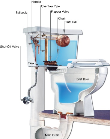 How a toilet works and why it breaks prestige plumbing for How does plumbing work